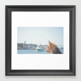 Harbor of Memories Framed Art Print