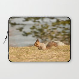 Squirrel's Lunch Break #decor #society6 Laptop Sleeve