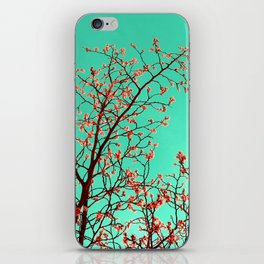 spring tree XXI iPhone Skin