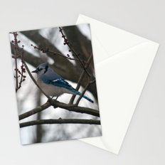 Blue Jay in Tree Stationery Cards