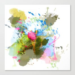 Vibrant painted thistle on white Canvas Print