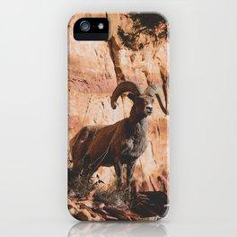Zion Bighorn Sheep iPhone Case