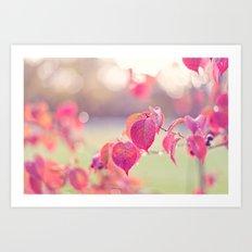 Autumn delight Art Print