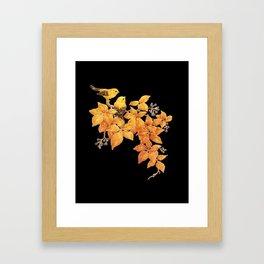 L'oiseau en or Framed Art Print