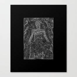 Spectral Lines Canvas Print