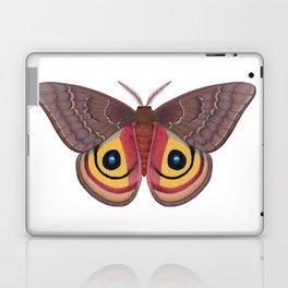 io moth (Automeris io) female specimen 1 Laptop & iPad Skin