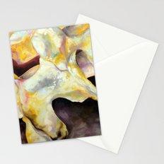Bone Study Stationery Cards