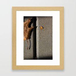 Fall Begins Framed Art Print
