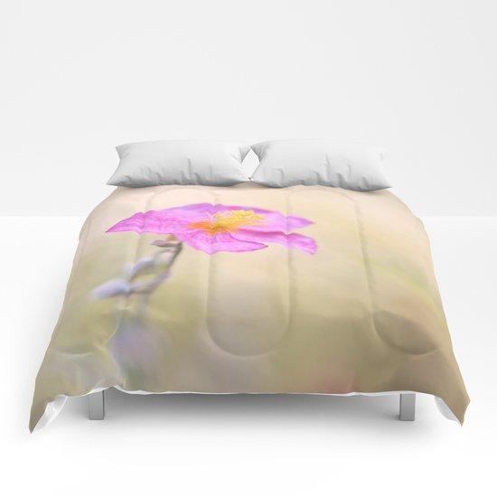 Lovely pink flower against backlit  Comforters