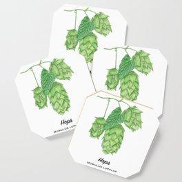 Beer Hops Botanical Painting Coaster