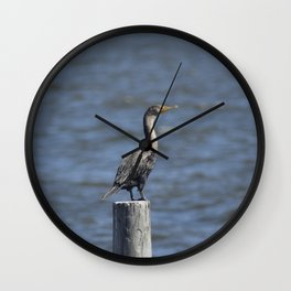 The Double Crested Cormorant Wall Clock
