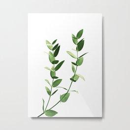 Minimal Eucalyptus Dream #2 #foliage #decor #art #society6 Metal Print