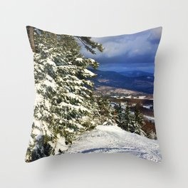 VIEWS Throw Pillow