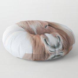 Icelandic Horse Floor Pillow