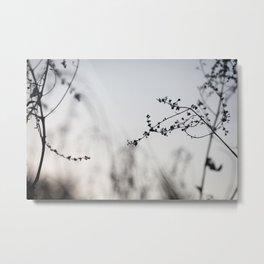 Silhouette 02 Metal Print