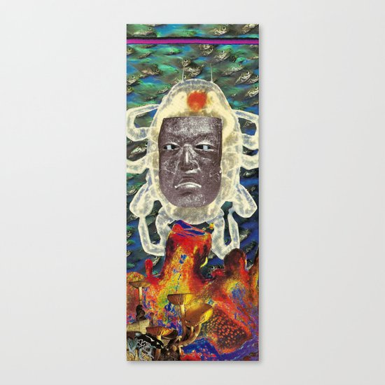 Stone Face Canvas Print