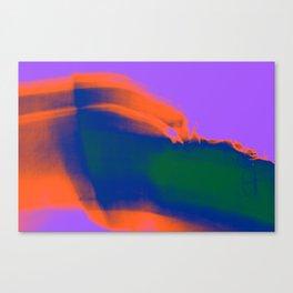 358 Canvas Print