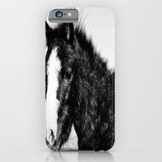 Mini Horse (2) iPhone 6s Slim Case