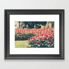 In red Framed Art Print