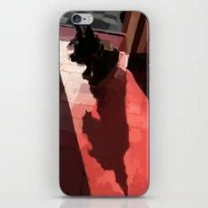 Groovy shadow iPhone & iPod Skin