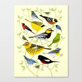 New World Warblers 3 Canvas Print