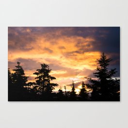 Sunset for a Foal Canvas Print