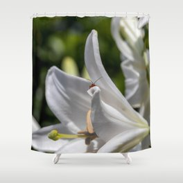 Red insect smiling on a lily Shower Curtain