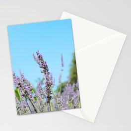FRAGRANT MORNING Stationery Cards