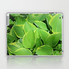 Hosta Plantaginea Laptop & iPad Skin