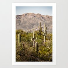 Scenes from Arizona, No. 2 Art Print