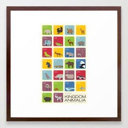 The Kingdom Animalia Framed Art Print