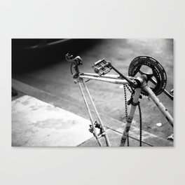 What once was a trusty steed.. Canvas Print