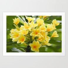 Happy Glorious Yellow Flowers Art Print