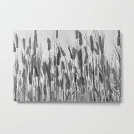 Abstract Barley Plant Pattern, black white Metal Print