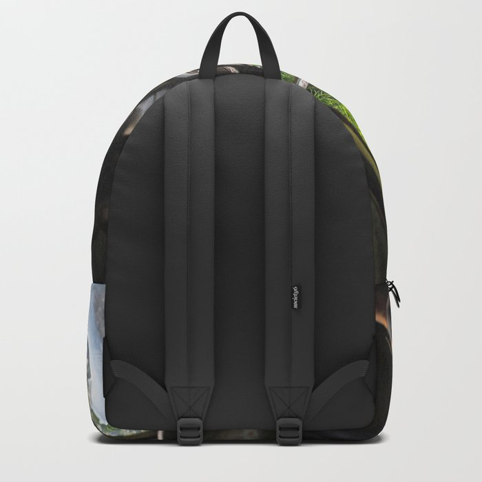 Window in Time Backpack