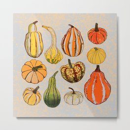 Pumpkins time Metal Print