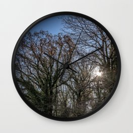 Beautiful day in a winter forest Wall Clock