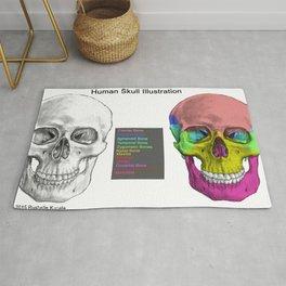 Human Skull Anatomy Rug