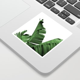 Banana Leaves, Sticker
