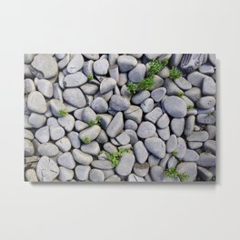 Smooth Stone Dry River Bed Metal Print