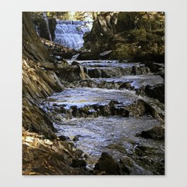 Creek Waterfall Canvas Print