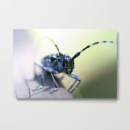RIGHT HERE ... Metal Print