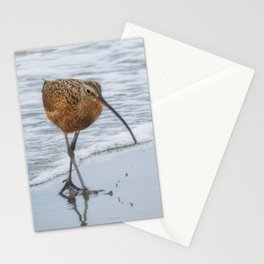 Long Billed Curlew Stationery Cards