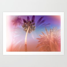 Palm Trees Kissing the Sky Art Print