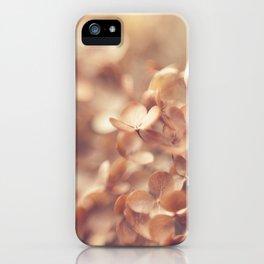 Soft Peach iPhone Case