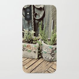 Cactus plants on coffee table iPhone Case