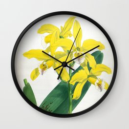 Laelia Xanthina Vintage Yellow Lindenia Orchid Wall Clock