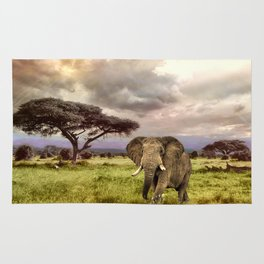 Elephant Landscape Collage Rug