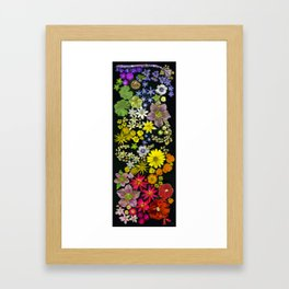 The Rainbow Chakra Framed Art Print