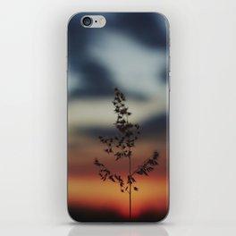 Sun Lights iPhone Skin